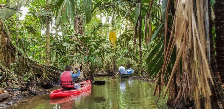 Costa Rica Tortuguero kayak