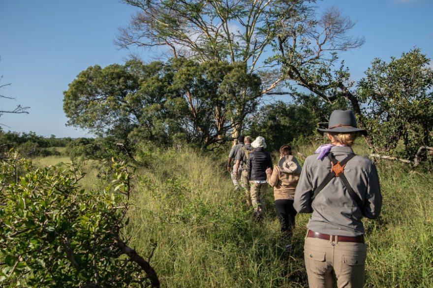 walking safari thanda