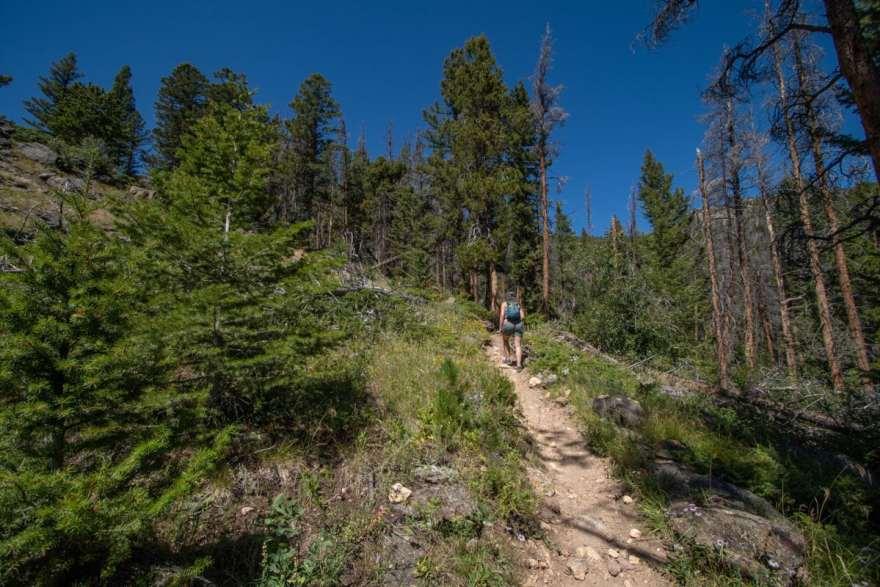 Beaver Creek Trail