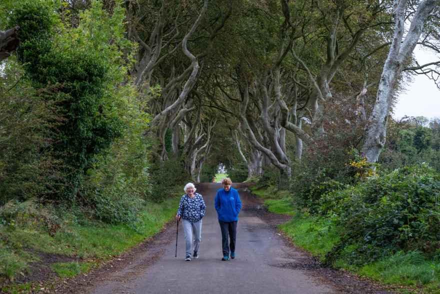 dark hedges kings road