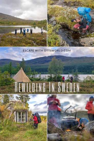 Rewilding Sweden