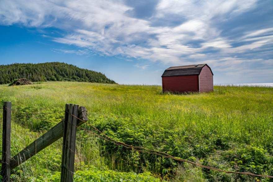 Barn Newfoundland