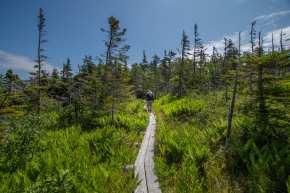 East coast trail flamber head hiking
