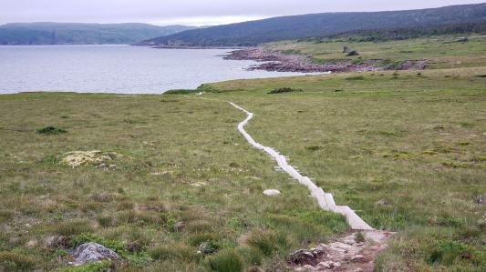 Trail along Cape Spear