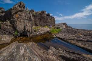 Newfoundland tidepools