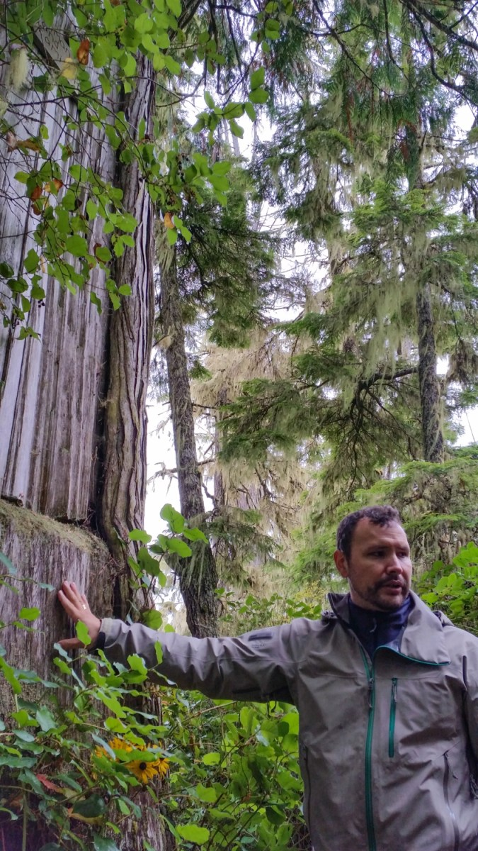 great bear rainforest first nations mike willie