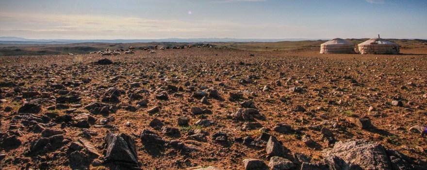 gobi desert herders