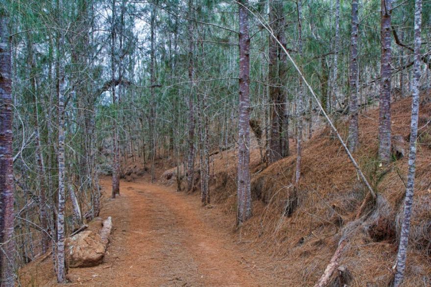 Munro Trail lanai hawahii