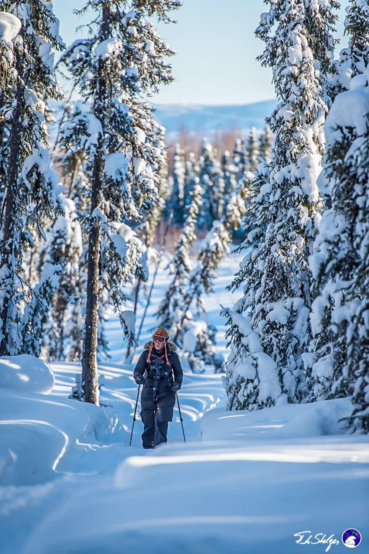alaska snowshoeing