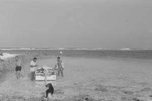 FI Fishing at Shark Passgae