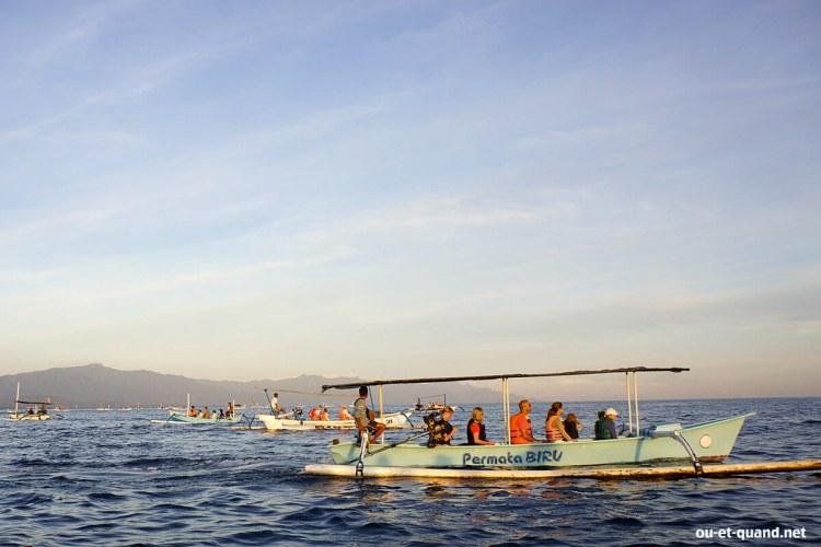 excursion dauphin bateau lovina beach à bali