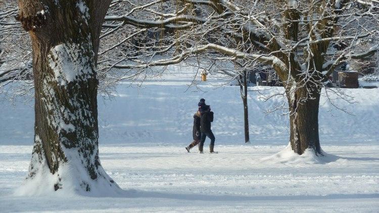 Famille marchant dans la neige