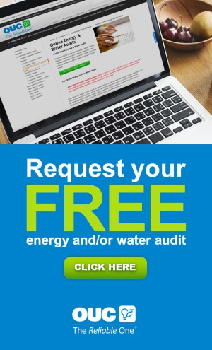 request your free energy and or water audit