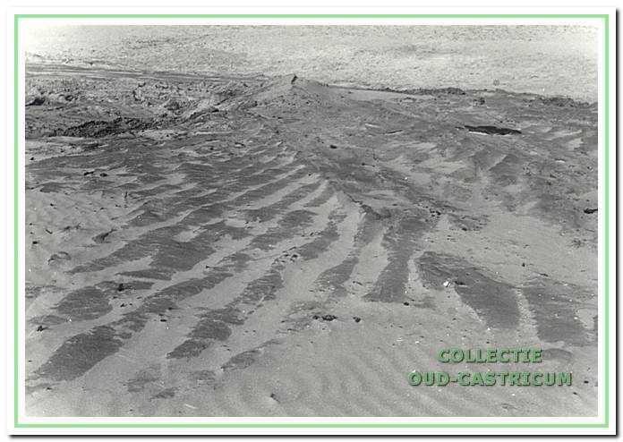 Akkersporen in bloot gestoven geploegd middeleeuws akkerland in de duinen bij Castricum.