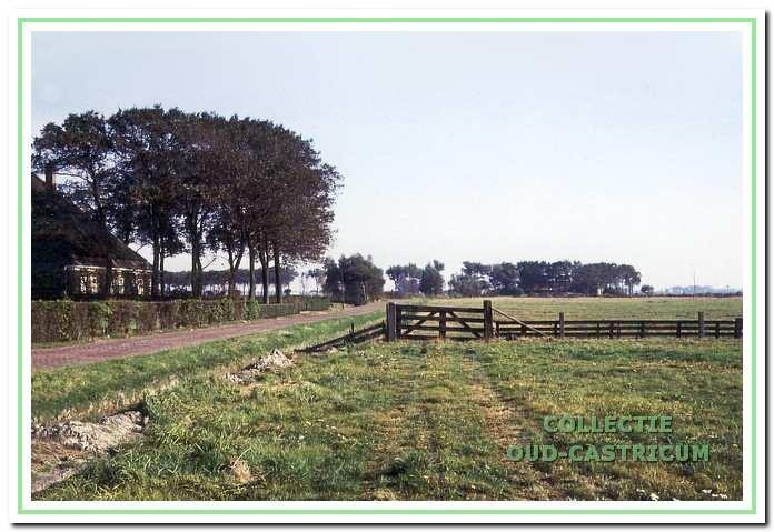Links de 'Mariahoeve' aan de Brakersweg (nr 66). Op de achtergrond de bomen langs de Alkmaarderstraatweg. Nu staat deze boerderij op de hoek Somerwegh-Walstro.