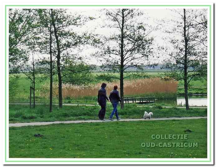 Stuk open landschap naast de, een wandelgebied met vijverpartijen. We kijken hier richting Buitendijkspad.