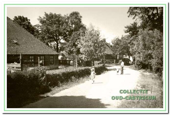 Links de boerderij van de familie Lute. Aan het einde van de bocht het huisje van Frans Zonneveld (nr 25) met het damhek naar de boerderij van Jaap Cornelisse (nr 24). Rechts achter het witte huisje waar Kees Mooij en Lou Zonneveld woonden.
