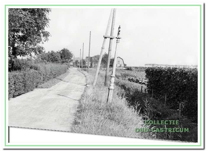 Op de achtergrond het huis van Willem Breetveld, aan de Eerste Groenlaan 19. Rechts op de foto zien we nog juist in de verte de rij bomen aan de Alkmaarderstraatweg. De foto is genomen op de plaats waar nu de kruising Lindenlaan-Eerste Groenelaan is.
