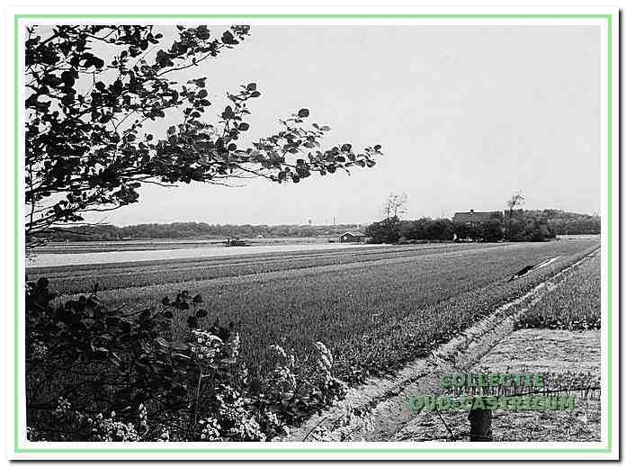 Zicht op de landerijen van de Zanderij met in de verte Duin en Bosch vanaf de Oude Schulpweg.