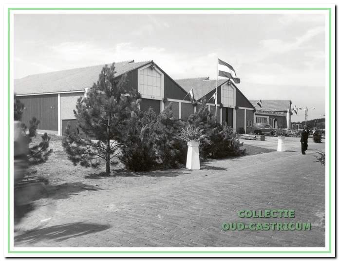 Het nieuwe veilingcomplex bij de opening in 1952.