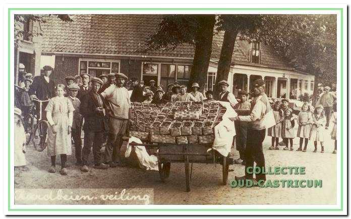 's Zomers was Castricum aardbeiendorp. De handkarren met aardbeien wachtten voor de veiling aan de Dorpsstraat. Tijdens het wachten werden de aardbeien keurig met wille lakens afgedekt.