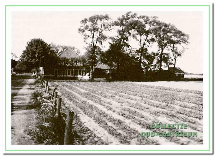 De boerderij, die vroeger aan de Heereweg te Bakkum heeft gestaan tegenover jeugdherberg 'Koningsbosch', maar door omstandigheden het veld heeft moeten ruimen.