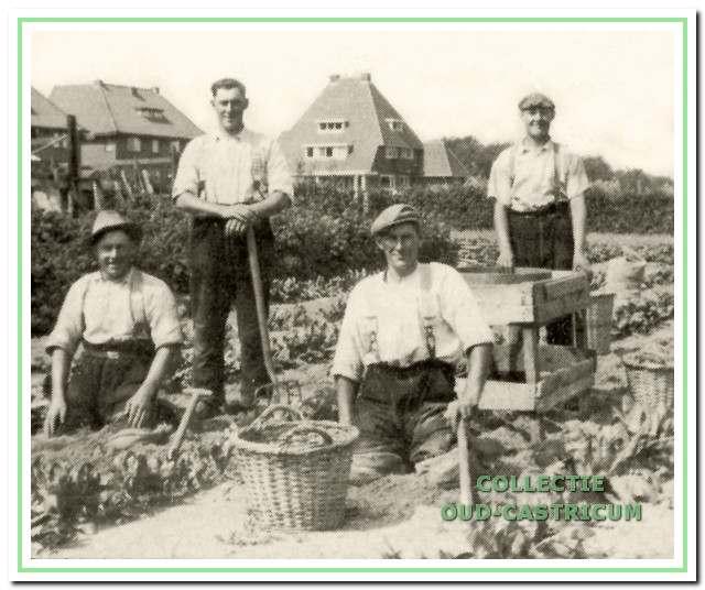 In de tuin ten oosten van de Beverwijkerstraatweg in Castricum. Van links naar rechts Han, Rinus, Willem en Piet Brakenhoff.