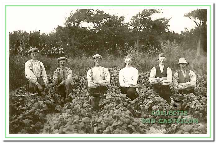 De gebroeders Veldt poseren in het duin bij hun land, de Lebstukken, dat tegenover het kampeerterrein lag (ongeveer 1920). V.l.n.r.: Jaap, Jan, Klaas, Gerrit, Cor en Piet.