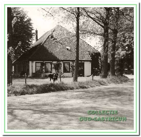 De boerderij aan de Breedeweg 77 in 1950 vanaf de oostkant.