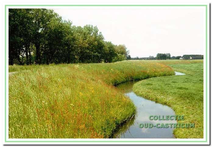 De Hogedijk is een prachtig dijkgedeelte van de Sint-Aagtendijk.