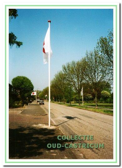 Vlaggen uit op de Henri Dunant-singel tijdens de jaarlijkse collecte.