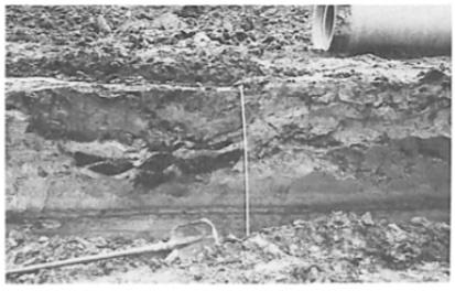 """De derde plaggen constructie. De plaggen structuur is goed zicht baar. De """"marmerstructuur"""" in de bovengrond lijkt hier niet meer aanwezig te zijn."""