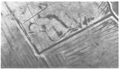 Detail van de luchtfoto, gemaakt in opdracht van het Hoogheemraadschap van de Uitwaterende Sluizen. Het gebied waar een regelmatig greppelpatroon ontbreekt is een gedeelte van de Hooiweid.