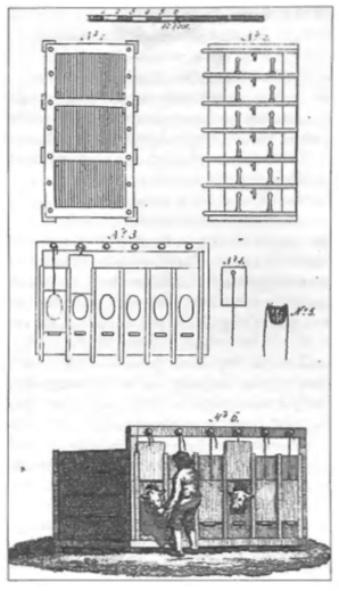 Deze tekening toont het mesten van de kistkalveren, zoals die reeds in de 18e eeuw op de aangegeven wijze werden gehouden.