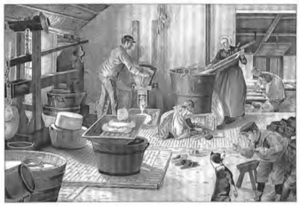 Schoolplaat van C. Jetses: De kaasbereiding op de boerderij.
