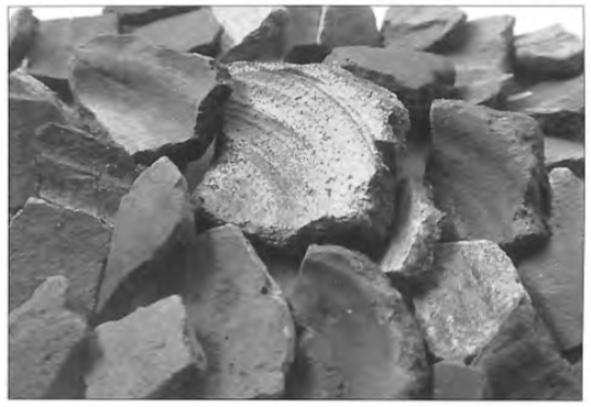 Import-aardwerk uit de 7e eeuw. Tot ongeveer 400 na Christus maakten de Friezen bijna al hun aardewerk zelf. Na een periode van schaarse bewoning in het kustgebied treffen we vanaf de 7e eeuw hier weer aardewerk aan. Het wonderlijke is dat het meeste aardewerk nu geïmporteerd is uit het Duitse Rijnland, en dus niet zelfgemaakt. Hier zien we bodems van 'ruwwandige' potten, afkomstig van de 'Wei van Brasser'. Ze zijn vermoedelijk via handel in Castricumse contreien terecht gekomen.