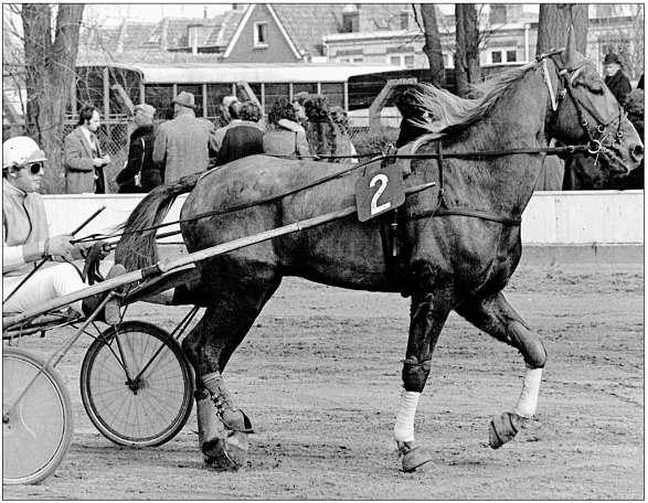 Jacques Geluk te Alkmaar in 1976.