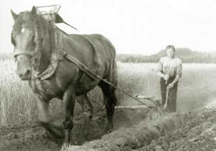 Bewerken van de Brabantsche Landbouw.