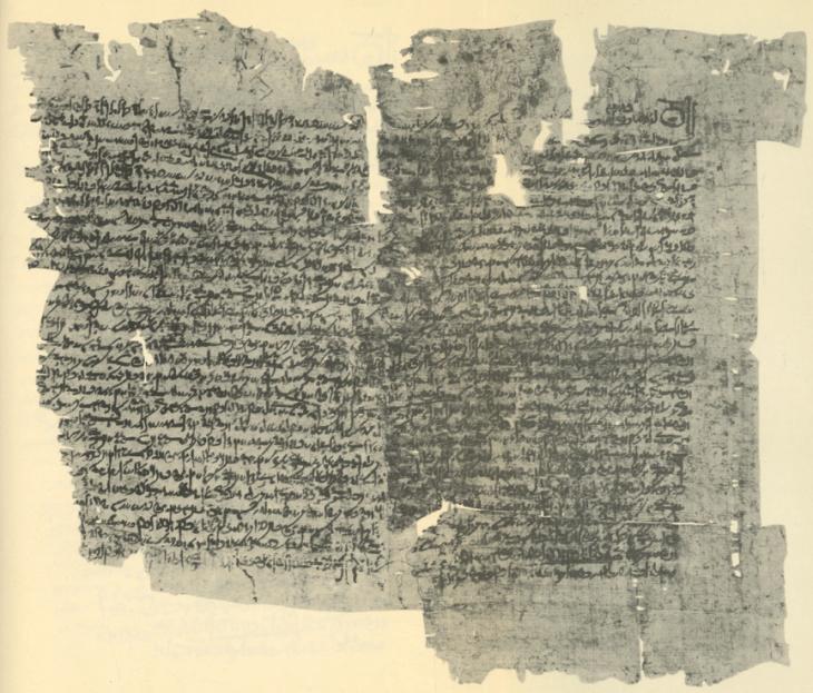 Demotisch reglement van de 'associatie van de tempel van Horus Behdety' (P. Lille dem. I 29, 223 v.C.)