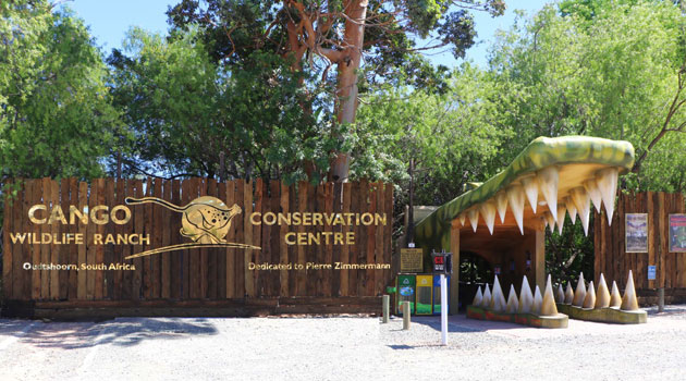 Image result for cango wildlife ranch