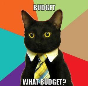 success-cat-budget-meme crop