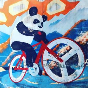 Pushbike panda