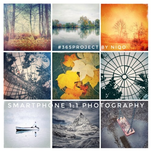 G+ #365 Smartphone Square Photography prOject by NiQo