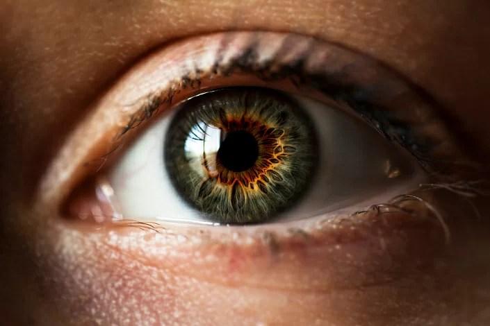eye structure, iris