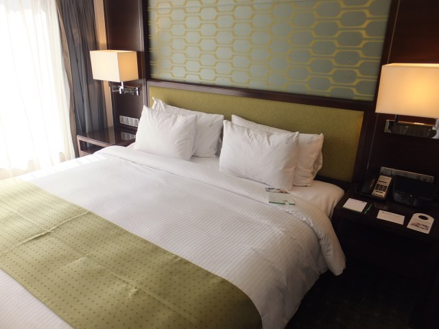 Holiday Inn Orchard City Centre