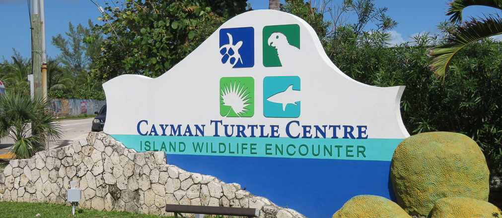 Cayman Turtle Centre – Grand Cayman Island