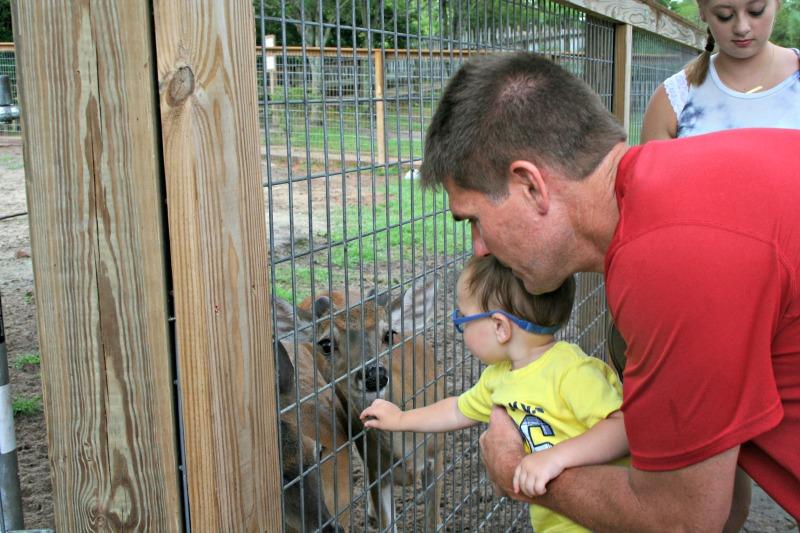 Gulf Coast Zoo