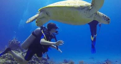 Health benefits of scuba diving