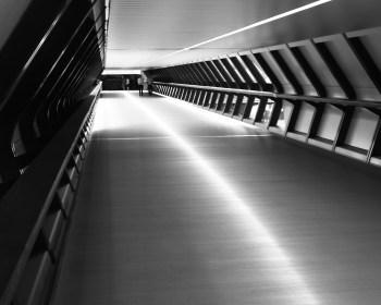 Crossrail Place, Canary Wharf: photo Alan Tucker