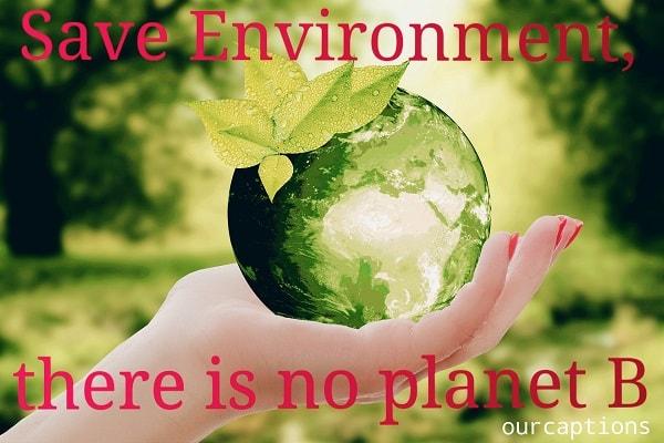 World Environment Day Status for Instagram
